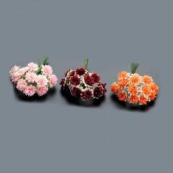 Pomo 12 flores bicolor