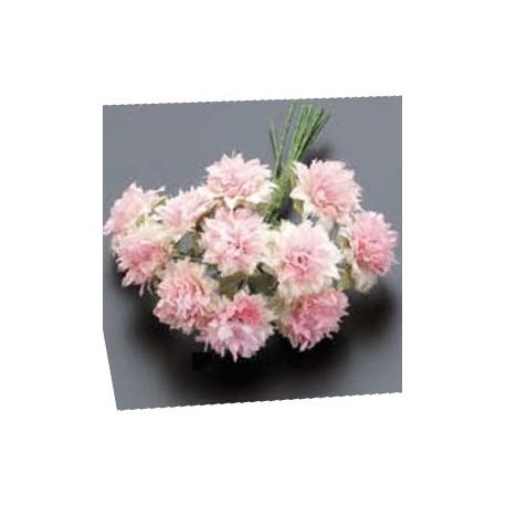 Pomo 12 flores bicolor rosa